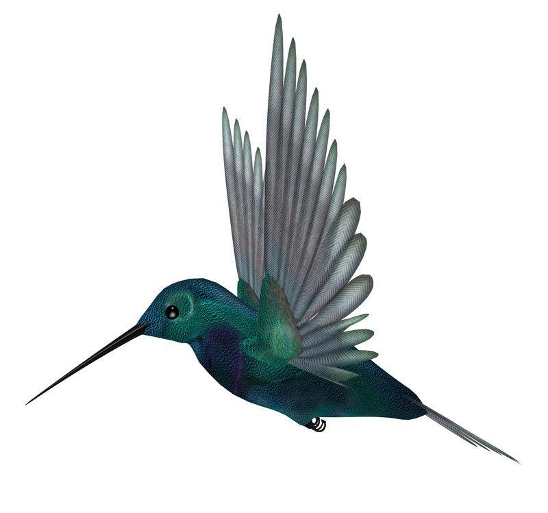 Hummingbird Google Opdatering